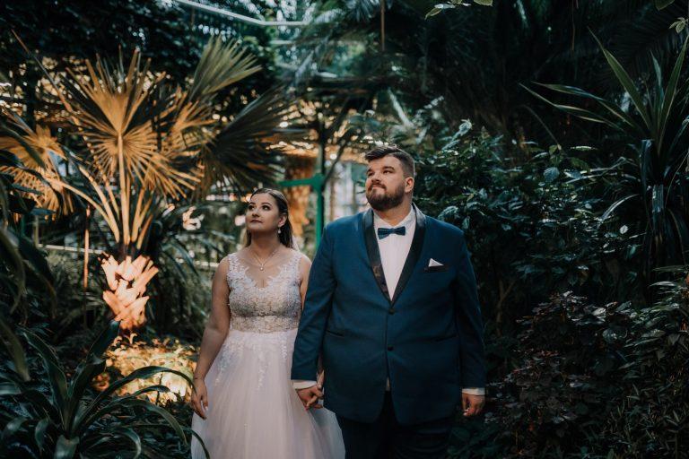 Palmiarnia Gliwice - sesja ślubna